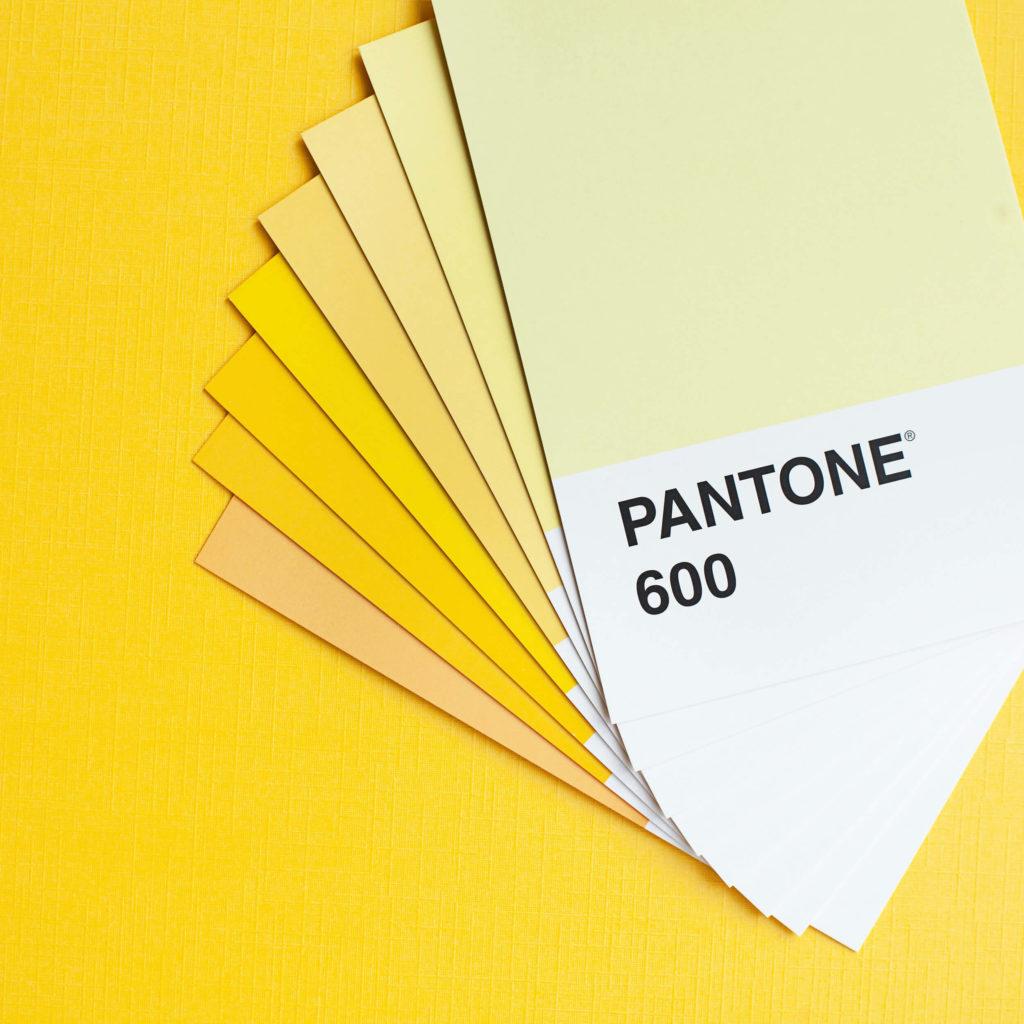 Consulenza per il giusto colore da Area Colore colorificio ad Asti Alba e Clavesana per privati e professionisti